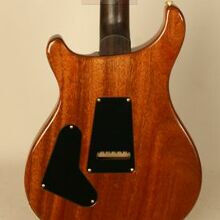 Photo von PRS Custom 24 Experience 2010 LTD (2010)