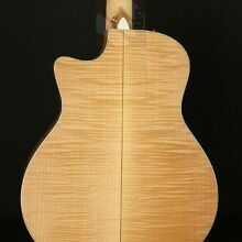 Photo von Taylor 656-CE 12-String Grand Symphony (2012)